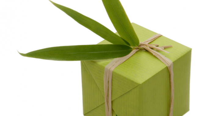 Eco-Friendly Holidays and Celebrations: Ideas to Green Your